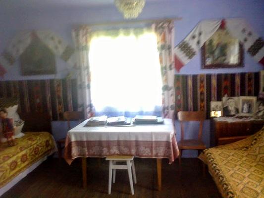 prodam_budynok_dilyanka_kosiv6